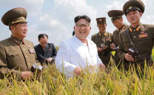 Supreme Leader Kim Jong Un and Korea Today 2016-2020