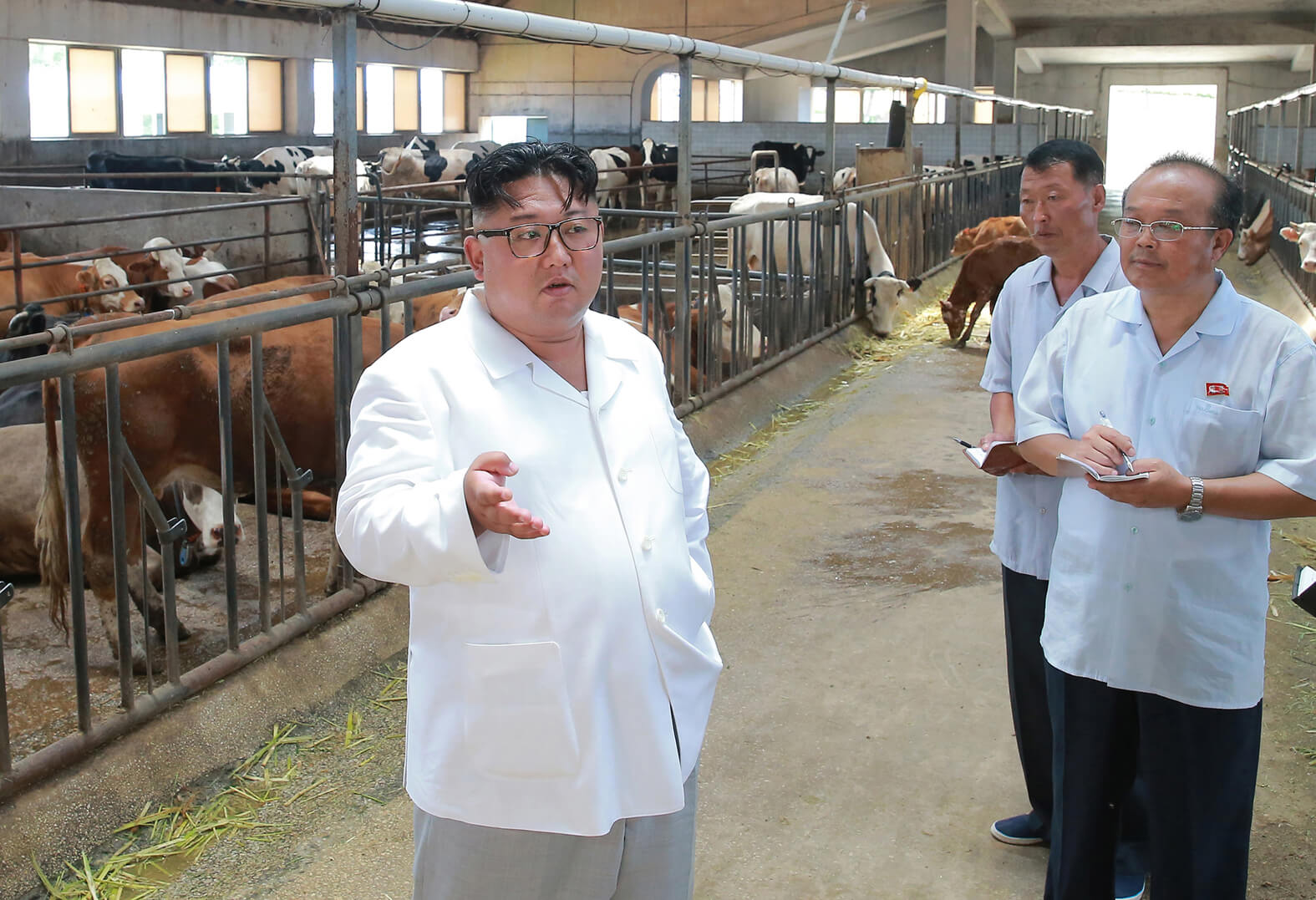 Kim Jong Un visiting a stock farm in August 2018